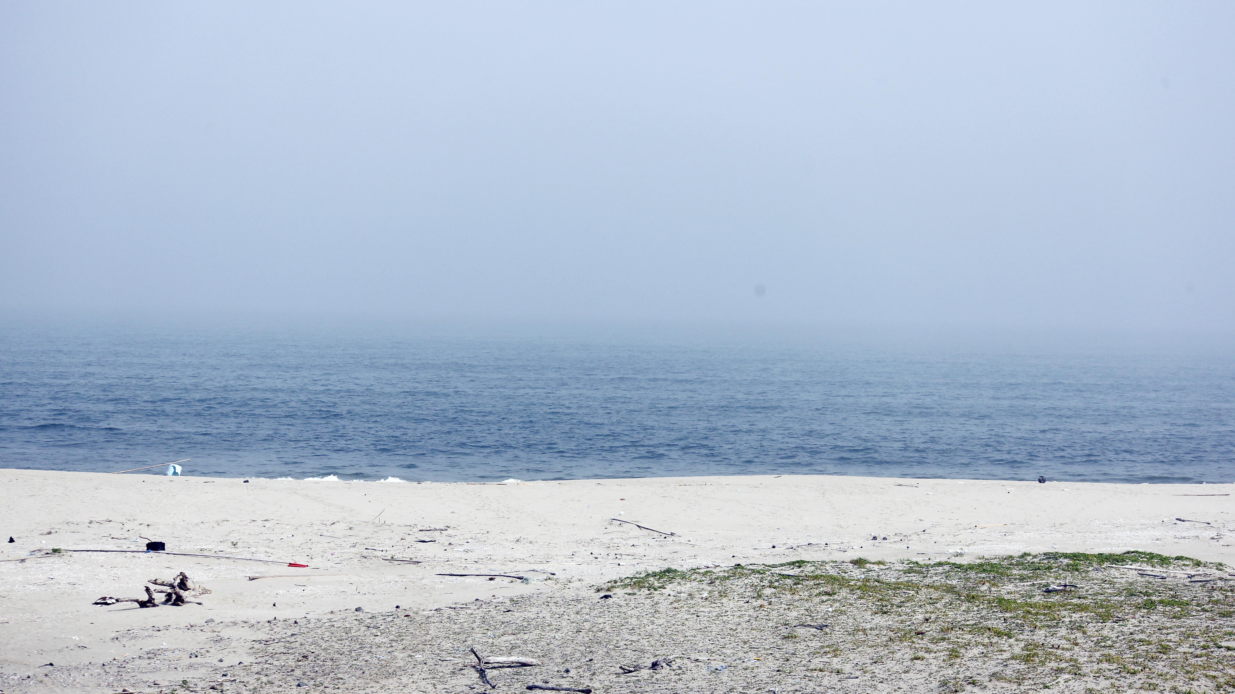 新浜1.jpg